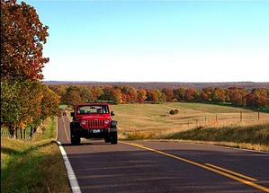 jeep fall drive foliage leaf peep